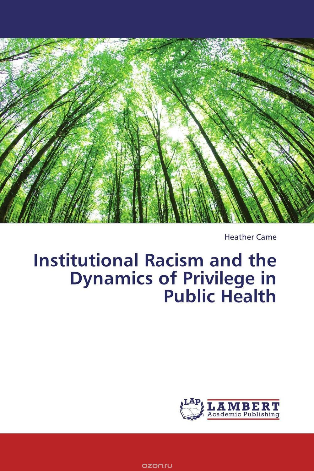 Institutional Racism and the Dynamics of Privilege in Public Health